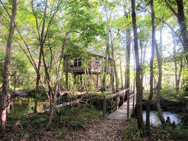 treehouse_treehouse